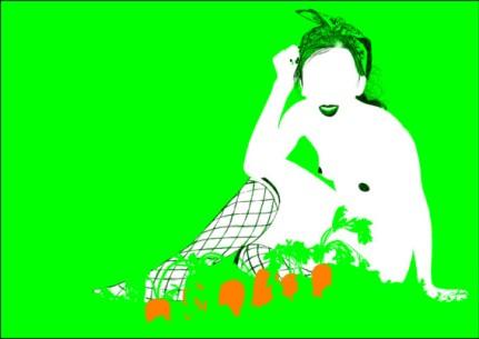 daucus carota 02